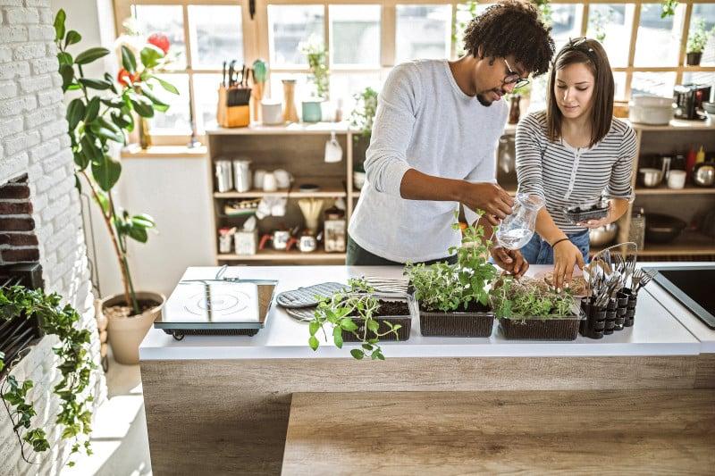 Sustainable Employee Benefits
